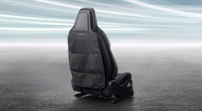 Picture of Backrest Protector